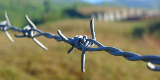 barbed-wire-114500_1280